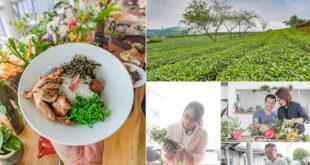 浪漫阿里山 - 在雲霧飄渺中之旅 x 林間採集 | 植栽手作 | 無菜單料理 | 茶席品茗